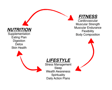Lifestyle Triad